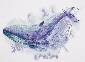Изображение Созвездие кита