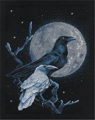 Изображение Ворон черный, ворон белый