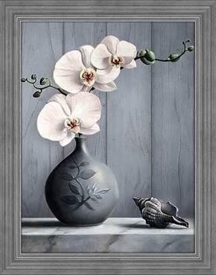 Изображение Орхидея