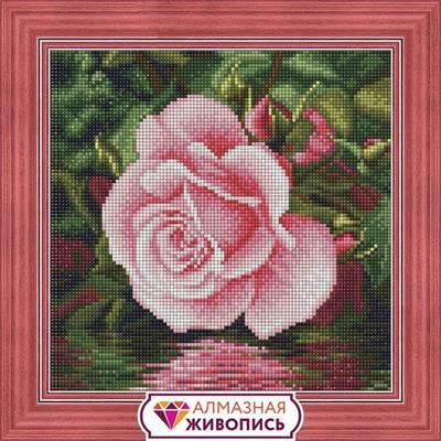Изображение Роза у воды