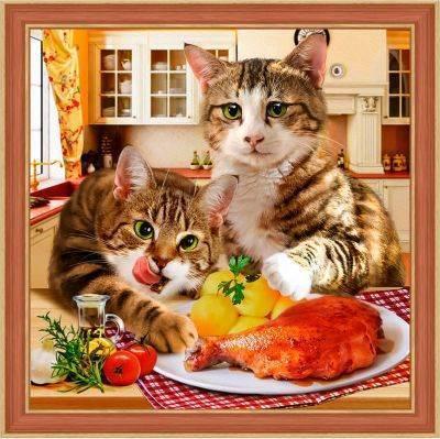 Изображение Коты воришки