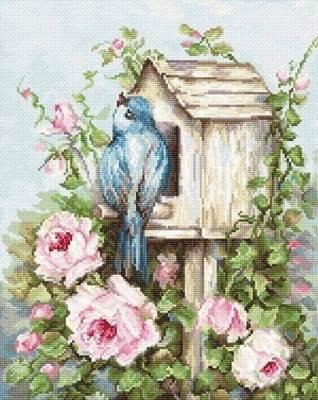 Изображение Птичий дом и розы