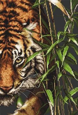 Изображение Тигр