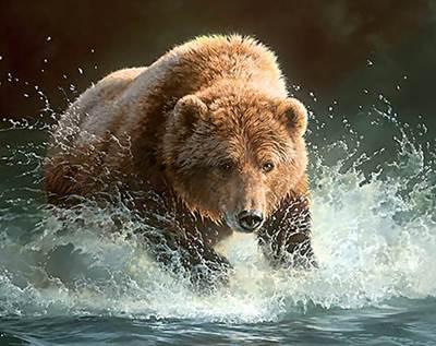 Изображение Медведь на рыбалке