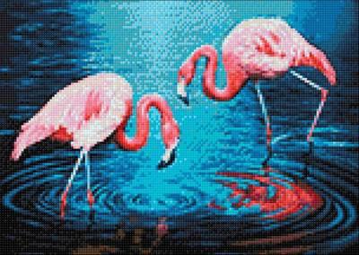 Изображение Фламинго на озере
