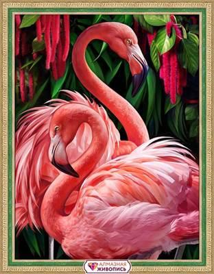 Изображение Пара фламинго