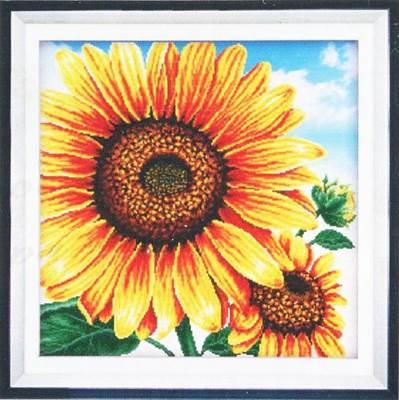 Изображение Цветок солнца