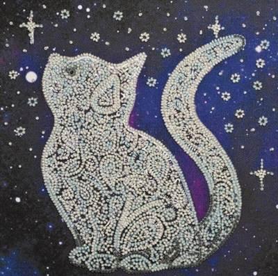 Изображение Звёздный кот
