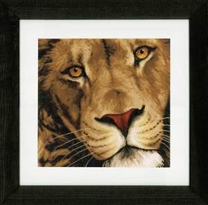Изображение Царь зверей (King of animals)