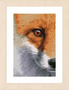 Изображение Лиса (Fox)