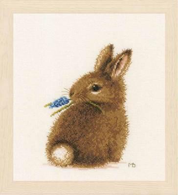 Изображение Кролик (Bunny)