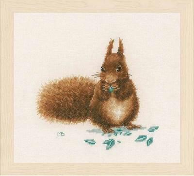 Изображение Белка (Squirrel)