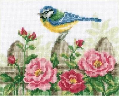 Изображение Синица и розы (Bluetit and Roses)