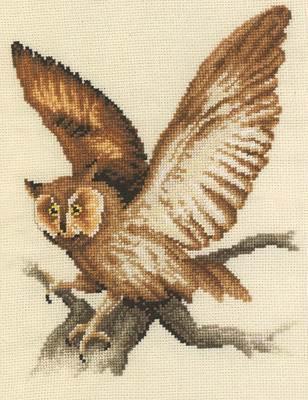 Изображение Филин (Owl Landing)