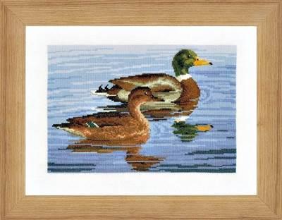 Изображение Семья уток (Family of Ducks)
