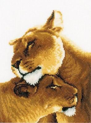 Изображение Львиная пара (Lion friendship)