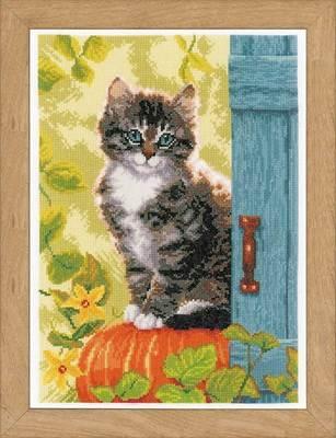 Изображение Кот и тыква (Cat and Pumpkin)