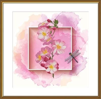 Изображение Фруктовый сад. Вишня