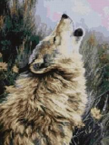 Изображение Вой охотника