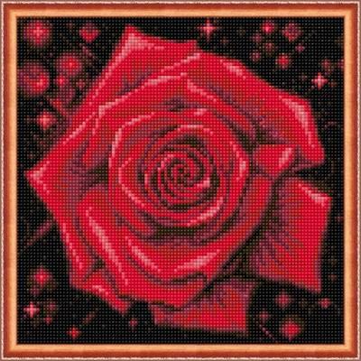 Изображение Сверкающая роза