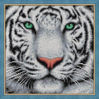 Изображение Портрет белого тигра