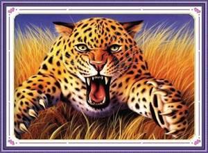 Изображение Леопард
