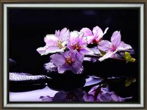Изображение Отражение красоты