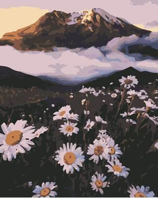 Изображение Ромашки в горах