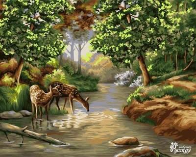 Изображение Утро в лесу
