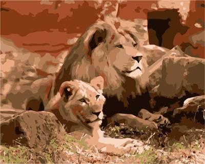 Изображение Львы на отдыхе