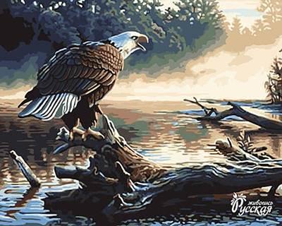 Изображение Утренняя охота