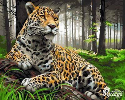 Изображение Леопард в лесу
