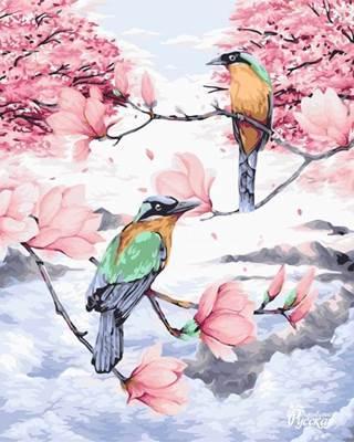 Изображение Райские птицы