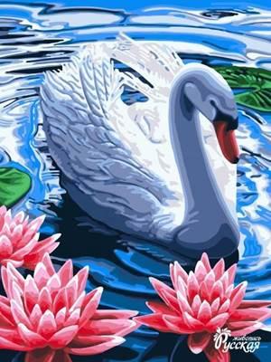 Изображение Лебедь в лотосах