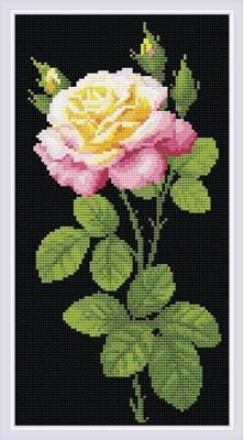 Изображение Дивный цветок