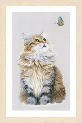Изображение Лесной кот (Forest cat)