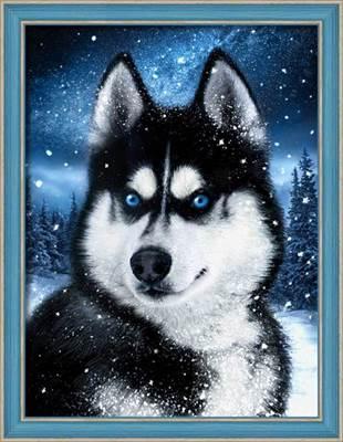 Изображение Хаски в снегу