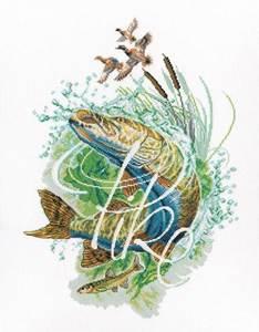 Изображение Cеребристая щука