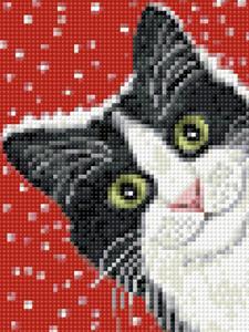 Изображение Праздничный кот