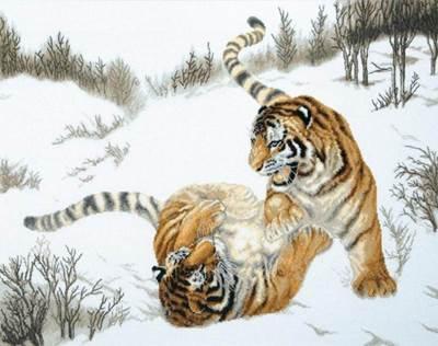 Изображение Игривые тигры