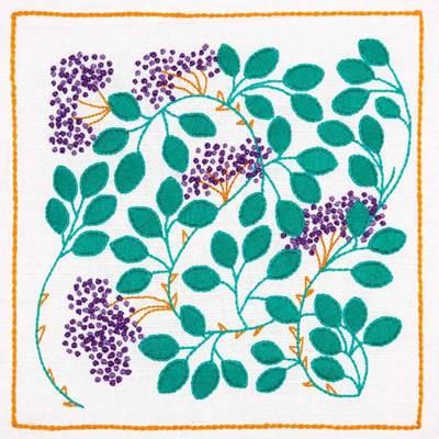 Изображение Ягоды живой изгороди (Hedgerow Berries)