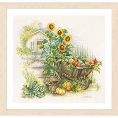 Изображение Подсолнухи и телега (Wheelbarrow & Sunflowers)