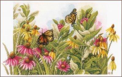 Изображение Бабочки и подсолнухи (Butterflies and coneflowers)