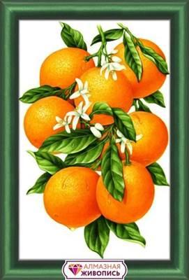 Изображение Гроздь апельсинов