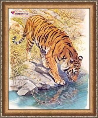 Изображение Тигр у реки