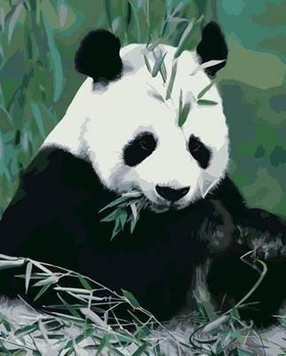 Изображение Панда в бамбуке