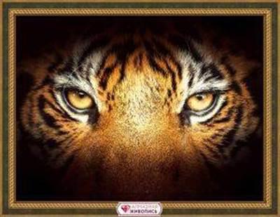 Изображение Тигриный взгляд