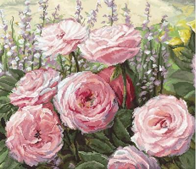 Изображение Летнее цветение (Summer Bloom)
