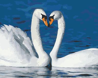 Изображение Пара лебедей