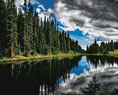 Изображение Лес у озера